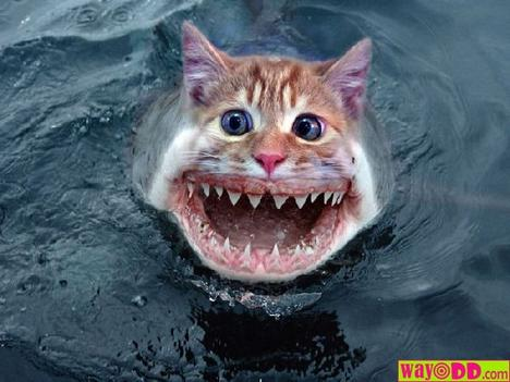 bad photoshop, but still, some creepy merit a la sharkweek (when was